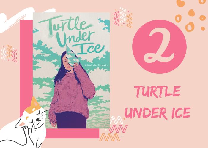 2. Turtle Under Ice